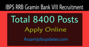 IBPS RRB Gramin Bank VIII Recruitment 2019
