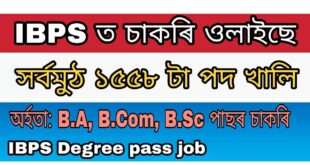 Institute of Banking Personal Selection IBPS Clerk x 1558 posts