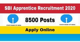 SBI Apprentice Recruitment 2020